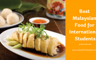 Best Malaysian Food for International Students
